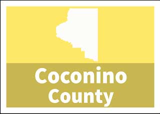 Coconino County Superior Court Custody forms