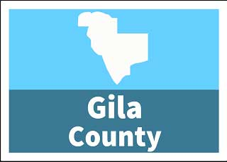 Gila County Superior Court Custody forms